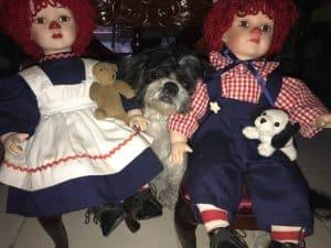 gala con muñecos alrededor