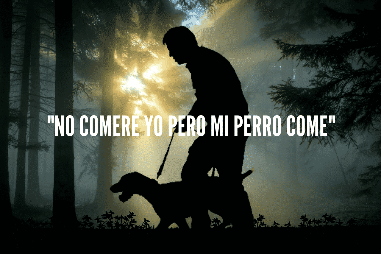hombre paseando su perro en medio de un bosque